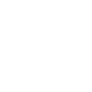 foundation-icon-give-300x300