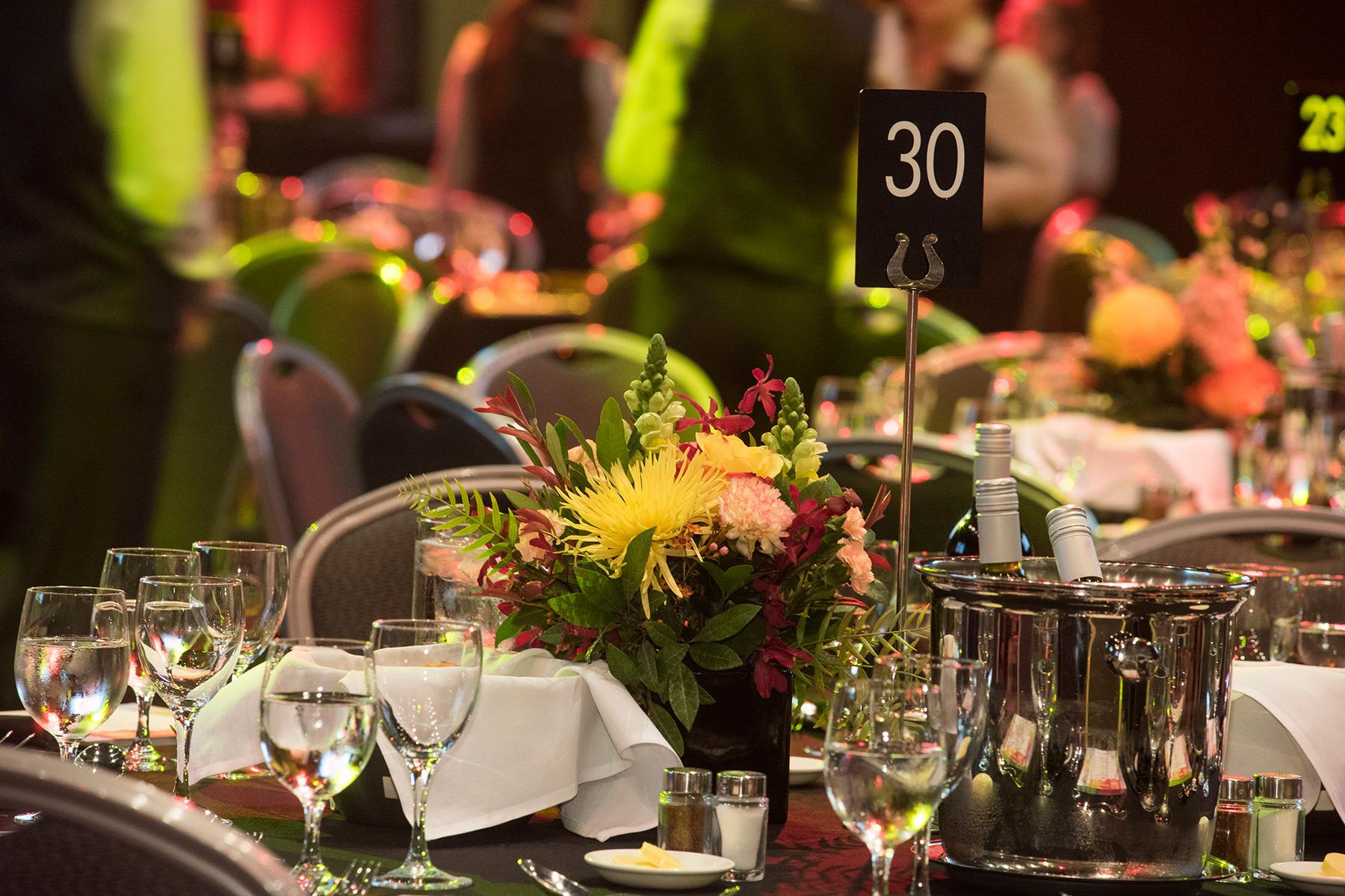 NNF gala dinner